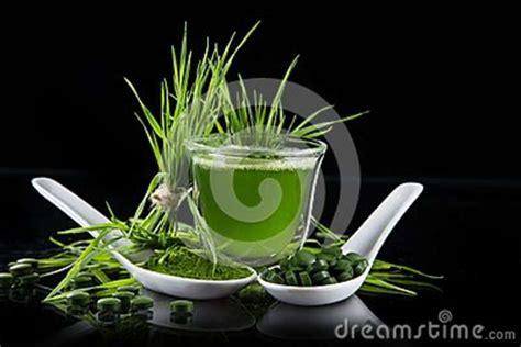 Detox Renew Chlorella by Barley And Chlorella Spirulina Stock Photo Image