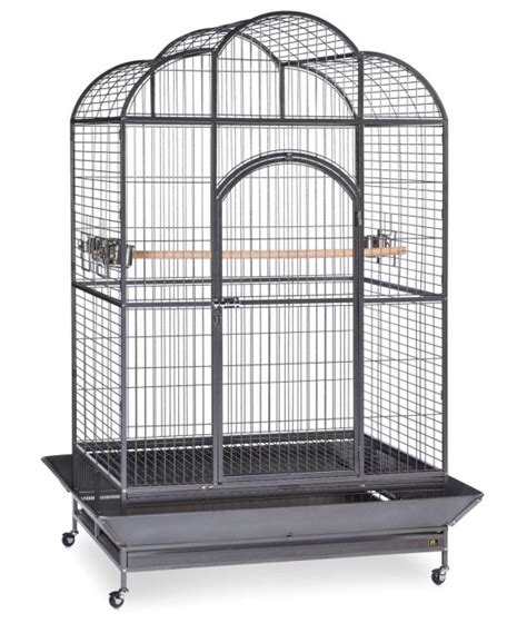 large bird cages silverado large macaw parrot cage by birdscomfort