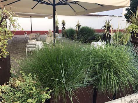 ristorante in veranda estate in veranda ristorante da marco