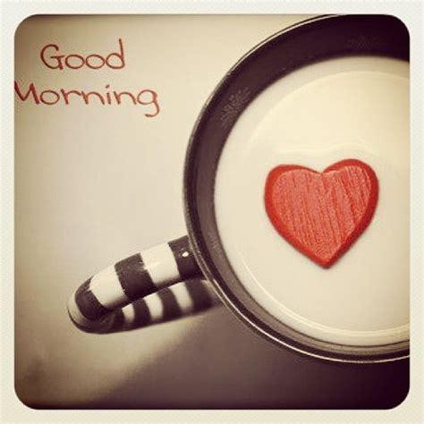 imagenes de good morning amor fotos e frases de bom dia eu lele e as crian 231 as