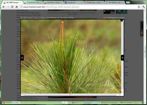 tutorial jquery zoom image jquery colorbox the best image zooming plugin for
