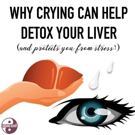 Can You Detox Your Liver by Why Can Help Detox Your Liver Organic