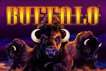 buffalo free slots machine buffalo slots free mobile desktop free play