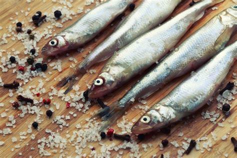 come si manifesta un intolleranza alimentare intolleranza al pesce ecco come si manifesta