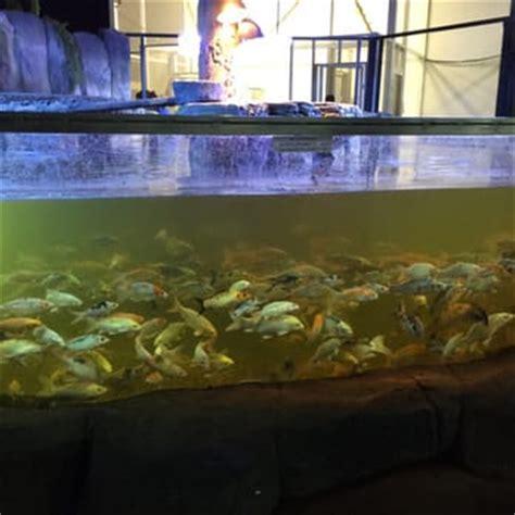 aquarium design austin tx fish aquarium austin bar with an aquarium dancefloor