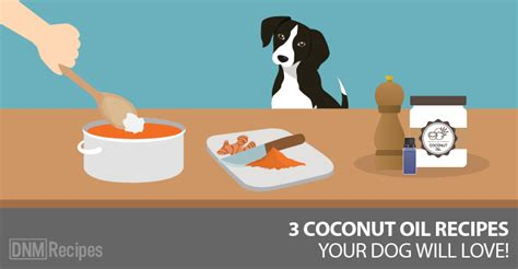 how much coconut for dogs coconut for dogs our 3 favorite recipes