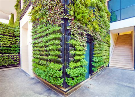 vertical gardens buildipedia