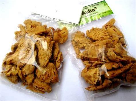 Kerupuk Jamur Tiram Rasa Original dinomarket pasardino keripik jamur tiram aneka macam rasa