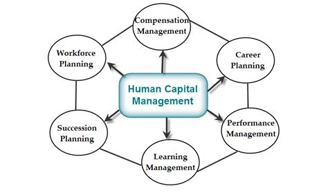 successful hiring for financial planners the human capital advantage books human capital management system hcms importance