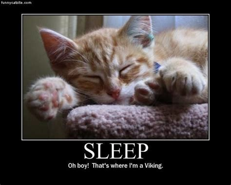 Funny Sleep Memes - need more sleep funny quotes quotesgram
