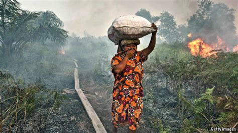 environmental challenges in africa in need of a green revolution asia s environment