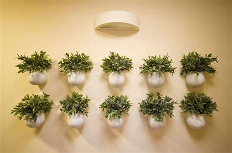 vasi da parete migliori vasi d arredamento scelta dei vasi migliori