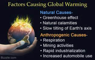 Cause And Effect Of Global Warming Essay by Global Warming Causes And Effects Essay