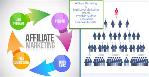 the best multilevel marketing companies affiliate marketing vs mlm which one is your best option