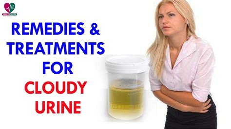 Could Cloudy Urine Be A Sign Of Detoxing by Remedies Treatments For Cloudy Urine Health