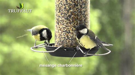Nourrir Oiseaux Jardin by Pourquoi Nourrir Les Oiseaux Du Jardin Jardinerie