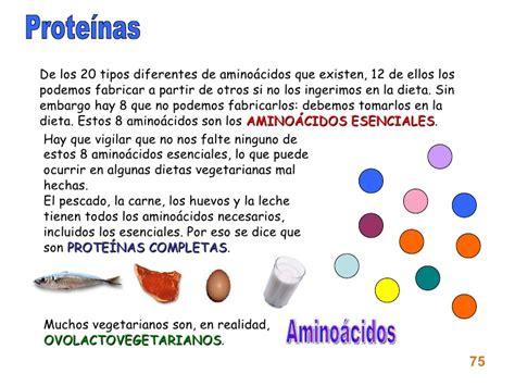 proteina y tipos de proteinas