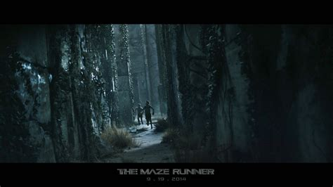 ด หน งthe maze runner running through the maze of dystopian movies the maze