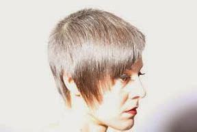 what is vertical layering haircut 17 best images about vertical layer on pinterest bright