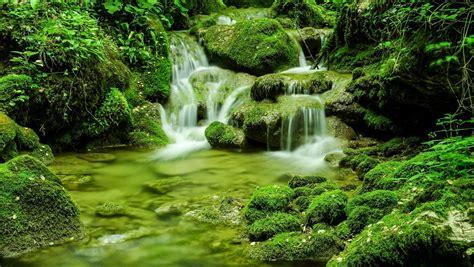 cascata giardino sfondi cascata giardino acqua natura verde fiume