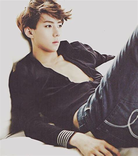 exo born day 434 best images about exo sehun on pinterest