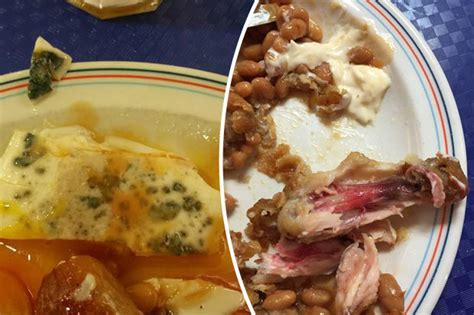 cuisine sodexo soldiers reveal disgusting army sodexo food on