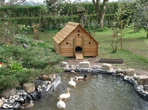 duck houses pin duck house on pinterest