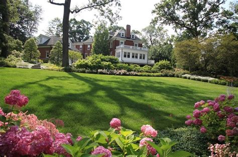 late summer lawn care 10 essential lawn care tips for your late summer home