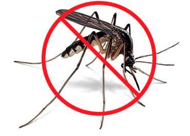 Lu Anti Nyamuk alerta por virus zica