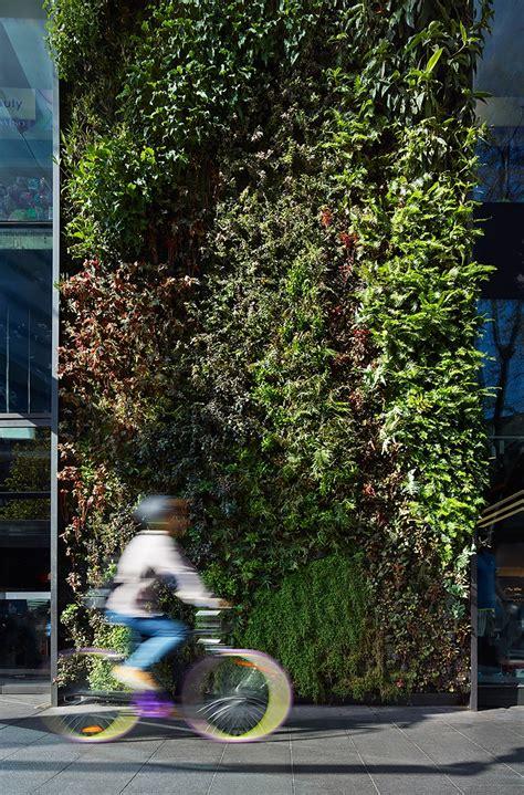 Sydney Vertical Garden Vertical Gardens Benefits Inspiration And Diy 1