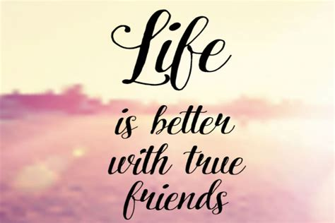best friend quotes best friend quotes for every situation awm