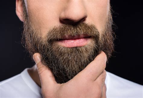 grooming anchorage the only 3 beard grooming tips you need a cut above anchorage nearsay
