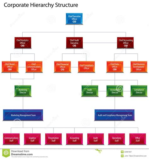 hierarchy chart corporate hierarchy structure chart royalty free stock