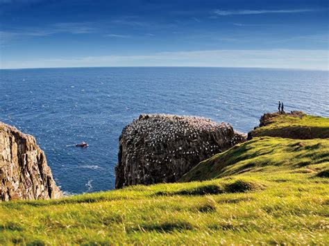 boat tours st john s nl package tours newfoundland and labrador canada