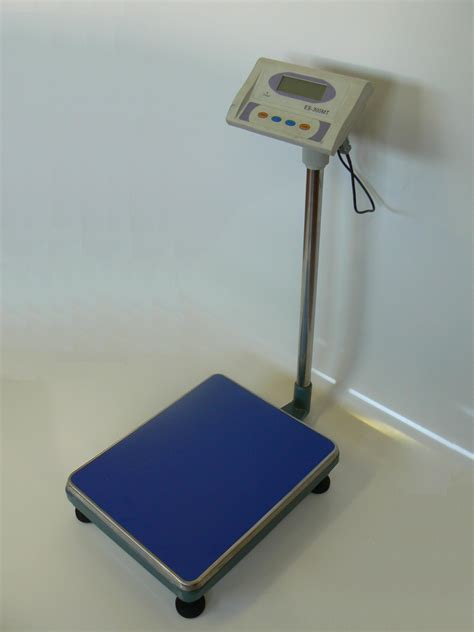 bench press scale 28 images bench scales uk 28 images