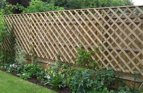 Garden Trellis Tops Trellis Fencing Pictures And Ideas