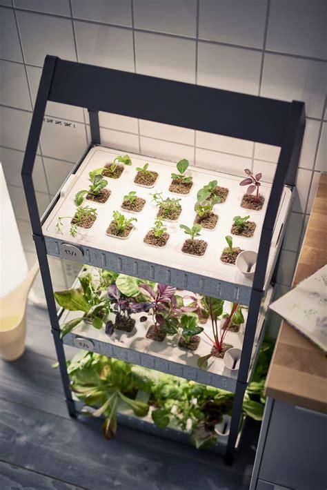 ikea  hydroponic countertop garden kit