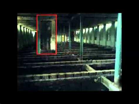 Imagenes Reales De Slenderman   slenderman imagenes videos videos relacionados con