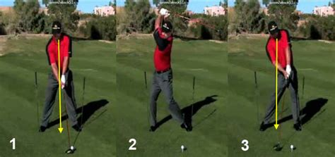 jason zuback swing hypothetical clinical study to determine whether the s