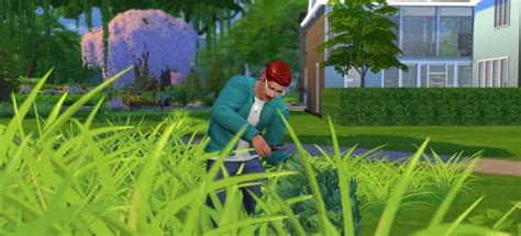 Gardening Sims 4 The Sims 4 Gardening Skill Plant Grafting Combos