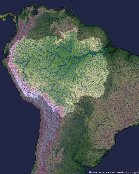 amazon basin interesting facts about amazon river just fun facts