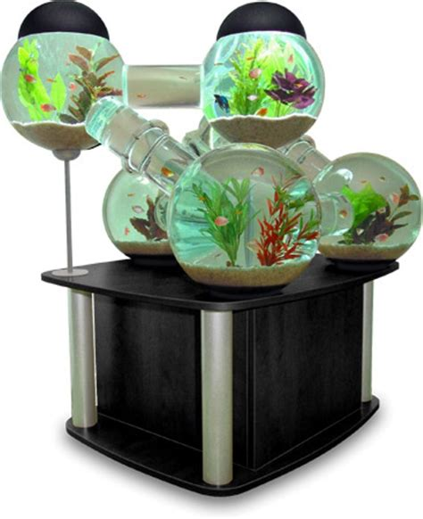 most unusual and creative fish tanks hometone home
