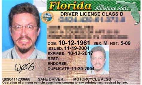 florida id card template florida id card template 28 images singing potatoes