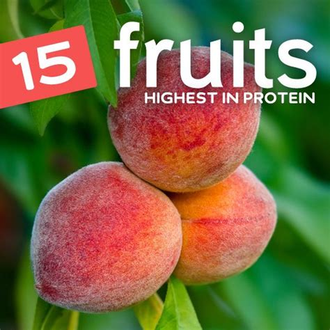6 vegetables with the most protein 15 fruits highest in protein