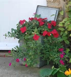 Unique Planter Box Ideas by Window Box Ideas Planters