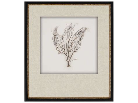 Shadow Box Wall Decor by Paragon Sea Tree Shadow Box Wall Pad7235