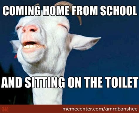 Sitting Meme - sitting on the toilet by amrdbanshee meme center