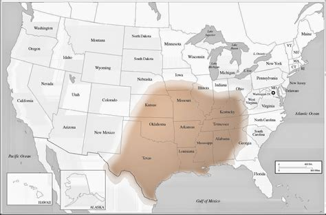 brown range brown recluse spider map