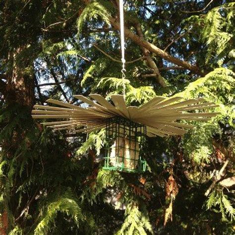 bird feeders rain and homemade on pinterest