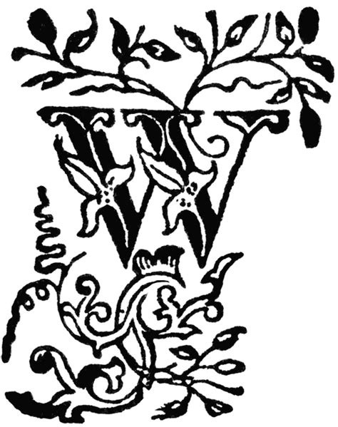 decorative letter w clipart etc